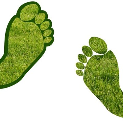 Daily Habits That Are of High Carbon Footprint